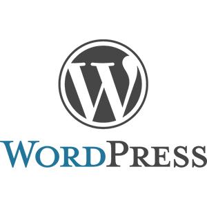 wordpress for plumbers